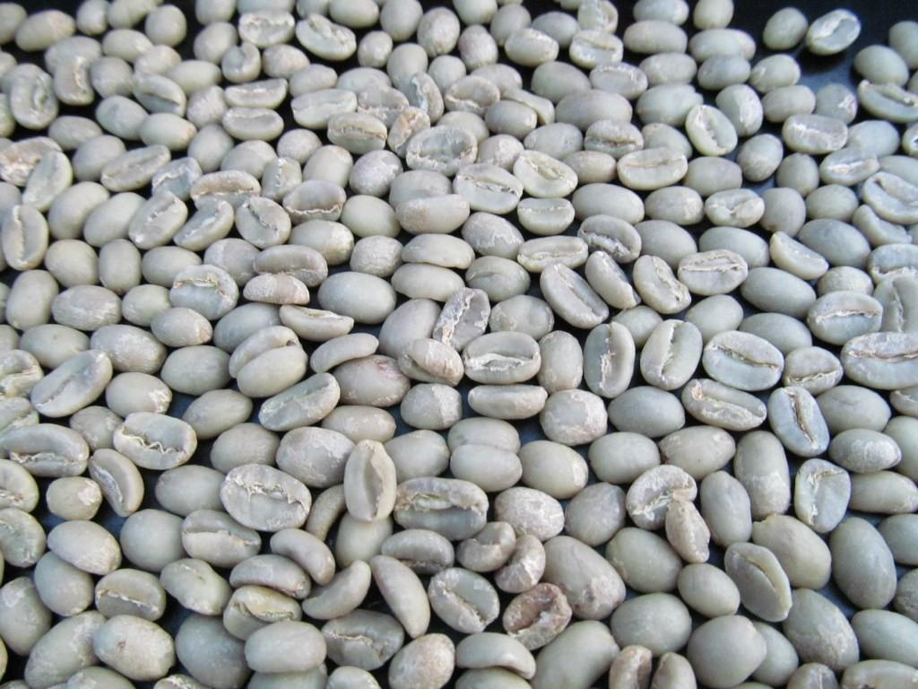 french press coffee formula