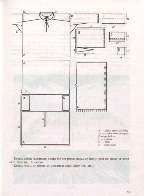 55-lpp.png