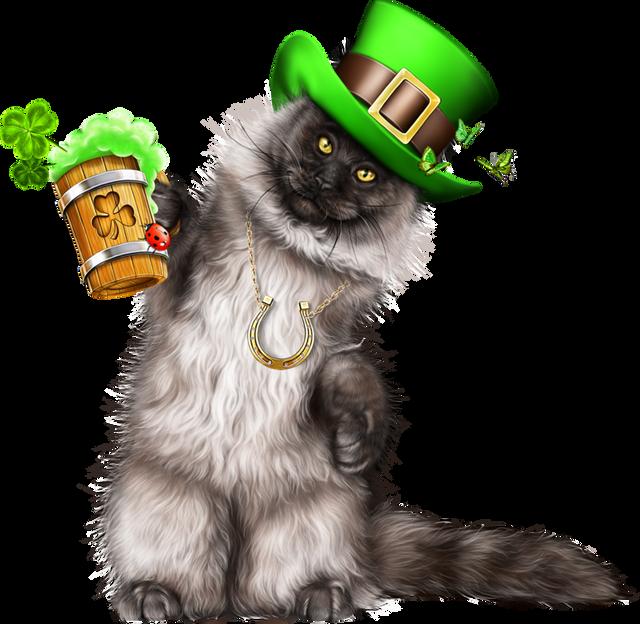Leprechaun-Cat-With-Beer-07.png