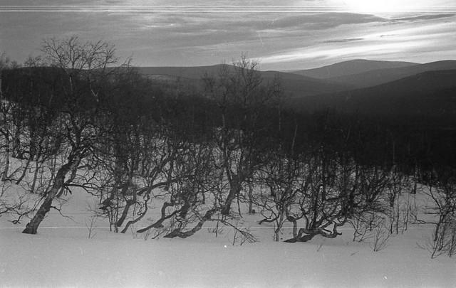 Dyatlov pass 1959 search 71