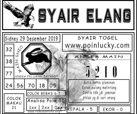 SYAIR-ELANG-sdy-4