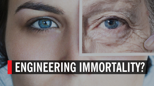 ENGINEERING-IMMORTALITY.jpg