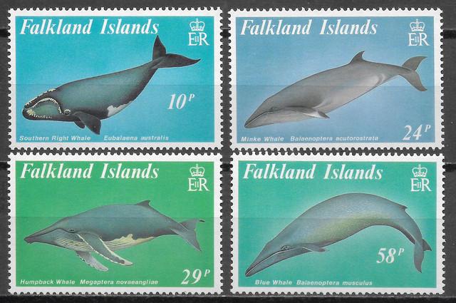 Wale-Falkland-1989-Sc