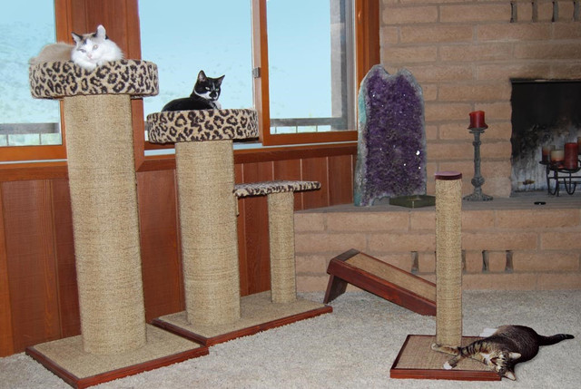 How to Decide What Size and Shape Scratching Post to Buy | PurrfectPost.com