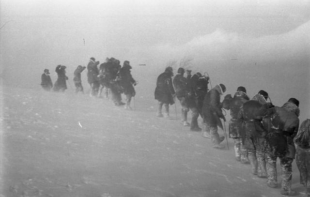 Dyatlov pass 1959 search 21