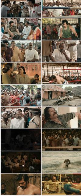 Sarpatta-Parampara-2021-1080p-WEB-DL-Hindi-Dub-Telugu-ESub-x264-www-7-Star-HD-Ninja-mkv-thumbs
