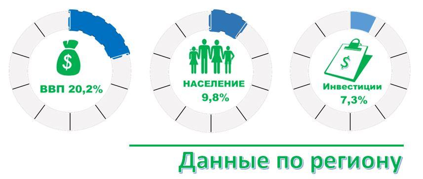 инфографика на практике