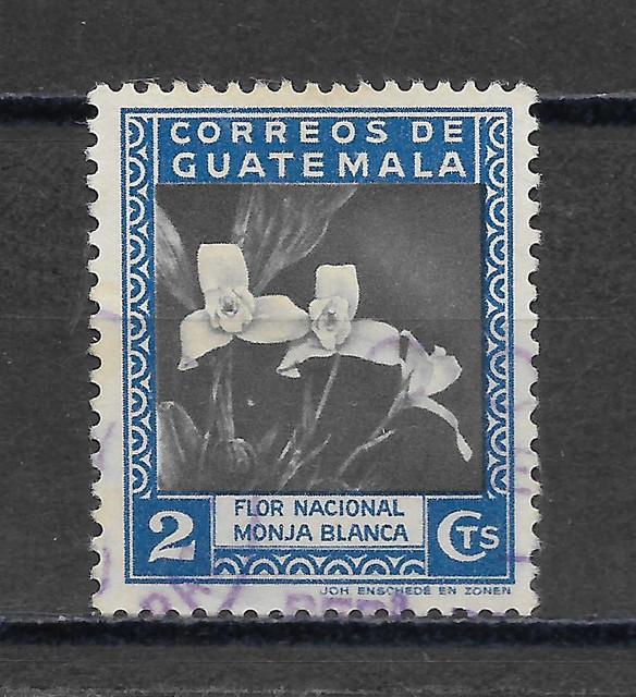 O Guatemala 414