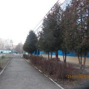 IMG-6798