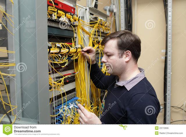 Network Synonyms, Network Antonyms