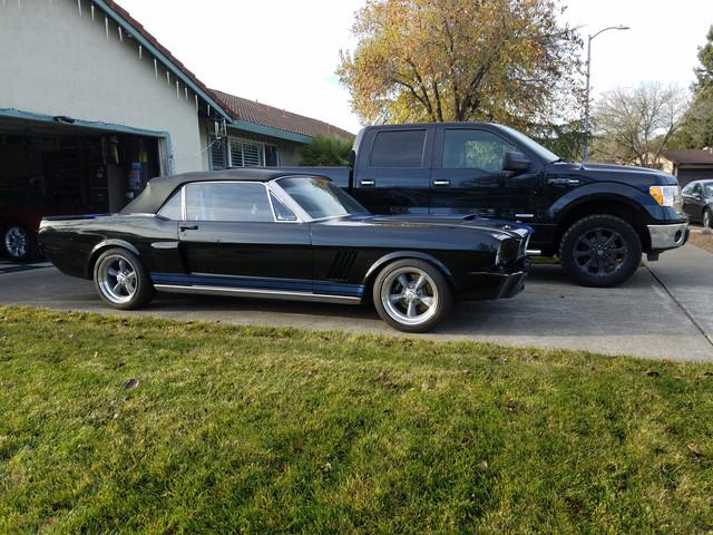 Mustang 1.jpg