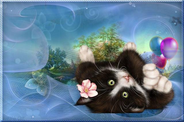 0-Kitty-in-Blossom.jpg