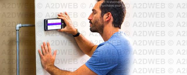 walabot-5.jpg